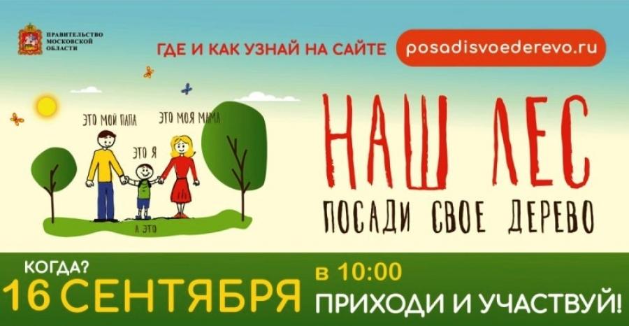 Акция «Наш лес. Посади своё дерево»