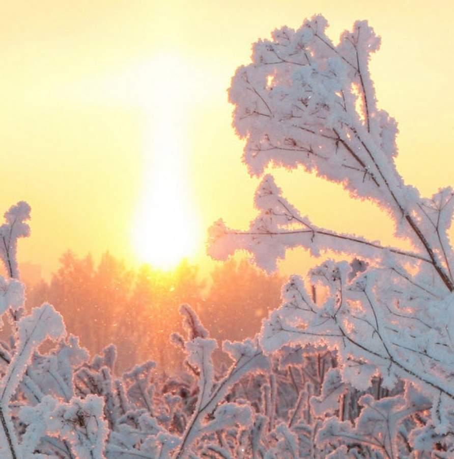 В Московском регионе на Рождество будет солнечно