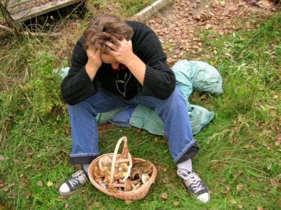 В подмосковных лесах с начала месяца заблудились 35 человек